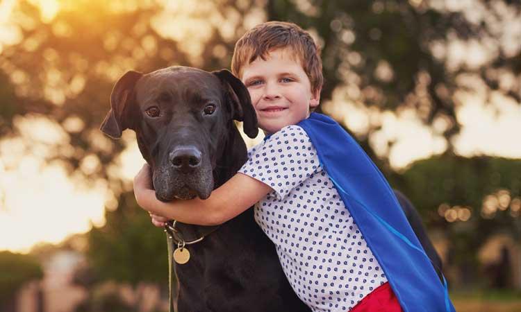 4 Benefits of Having a Pet
