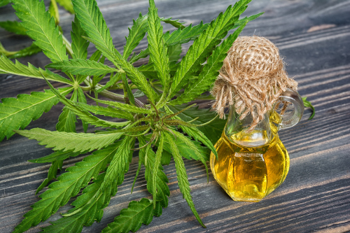 Understand How To Use CBD Oil For Pain Relief